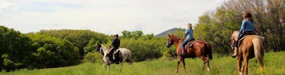 Trail ride review